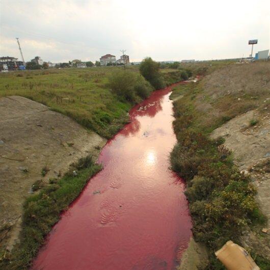 Kimyasal atık nedeniyle dere 'kırmızı ve pembe' akıyor