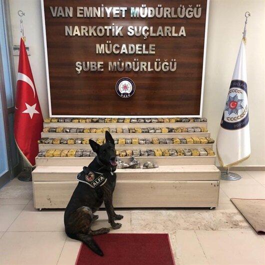 PKK'ya 500 milyonluk darbe