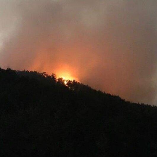 Kütahya'daki orman yangını söndürüldü