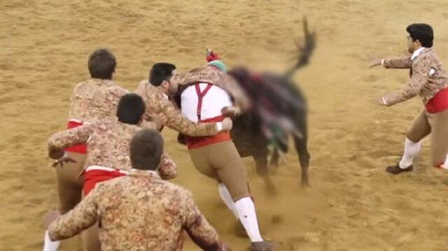 Boğa, 8 matadoru hastanelik etti.