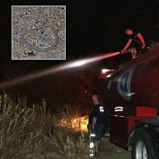 Yangında ortaya çıkan oyuncak kobra yılanı korkuttu
