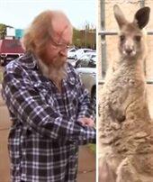 Kanguru karı kocayı dövdü