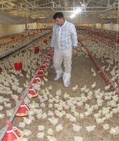 Yöneticiliği bırakıp çiftlik kurdu