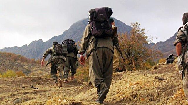 Suud'dan PKK'ya 100 milyon dolar
