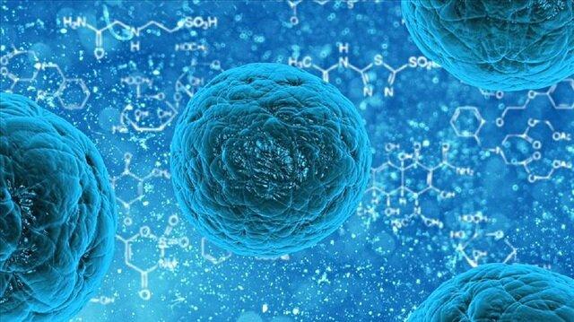 Türkiye kanser ve kök hücre tedavisinde çok iyi