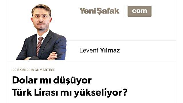 Dolar mı düşüyor Türk Lirası mı yükseliyor?