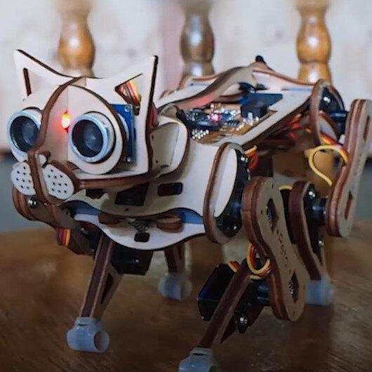 Robot kedicik Nybble