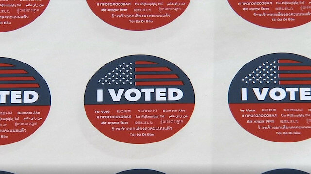 US midterm elections: I voted because...