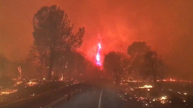 Kaliforniya'da yangın: Alevler ormanı yok etti