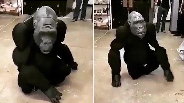 Robot gorili görenler gerçeğinden ayırt edemiyor