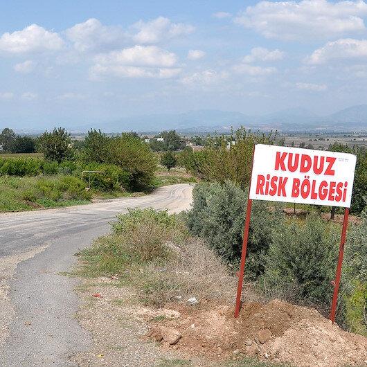 Bakanlıktan Balıkesir'de 'kuduz karantinası' açıklaması