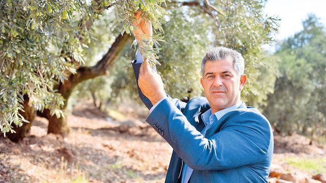 Ziraat Odası Başkanı Mehmet Faruk Temelli, ilçede üretilen kaliteli, 14 çeşidi bulunan zeytinin, ülkenin dört bir yanına gönderildiğini ifade etti.