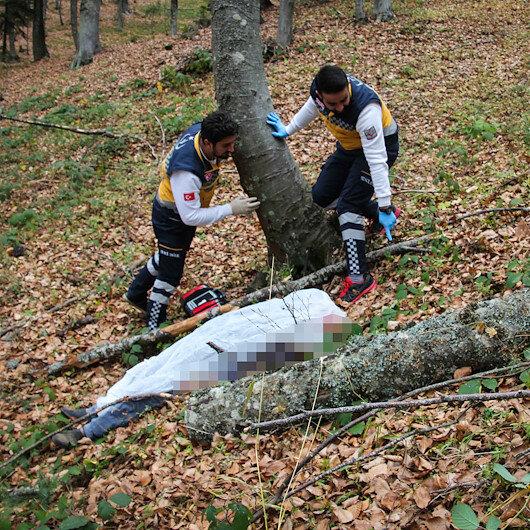 Kestiği ağaç yaşlı adamın ölümüne neden oldu