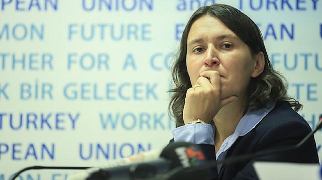 Turkey accession talks must be suspended, says EU Ankara negotiator