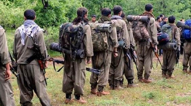 Hundreds defect from PKK terror group as Turkish ops gain pace