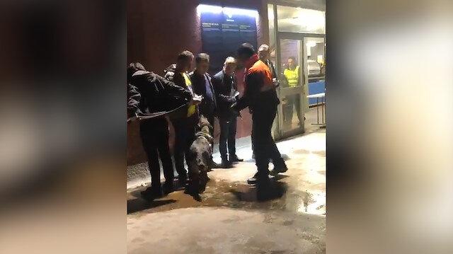 Barcelona-Fenerbahçe maçında Türk taraftarı köpeklerle aradılar!
