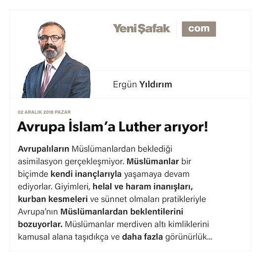 Avrupa İslam'a Luther arıyor!