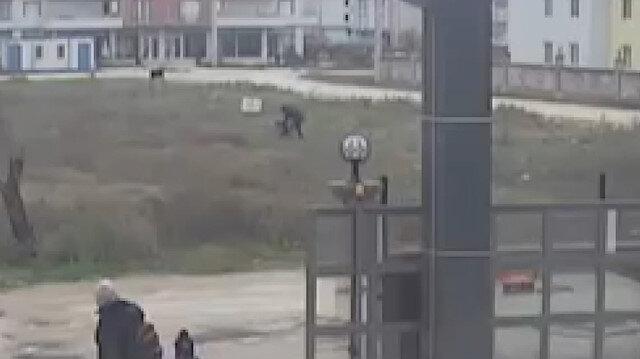 Kuşlarına bakan çocukları tekme tokat dövdü!
