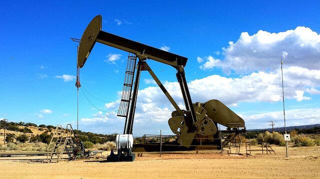 TPAO petrol arama
