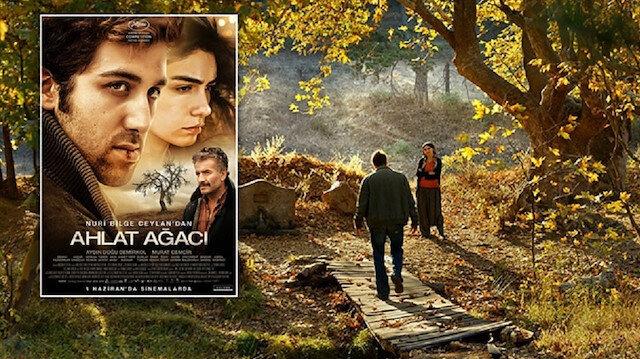 Oscar aday adayları açıklandı: 'Ahlat Ağacı' listede yok