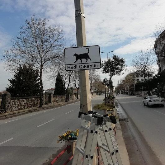 Yalova'da sürücüler 'Kedi Çıkabilir' levhalarıyla uyarılıyor