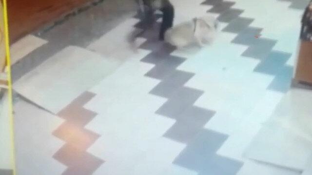 Köpeğe tekme atıp sopa ile saldırdı!