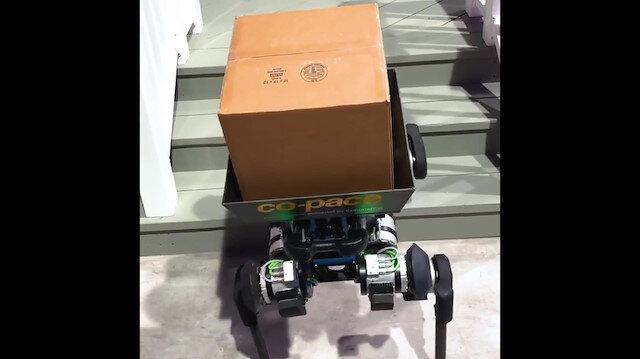 Teslimat öncesi kapıyı çalan robot köpek