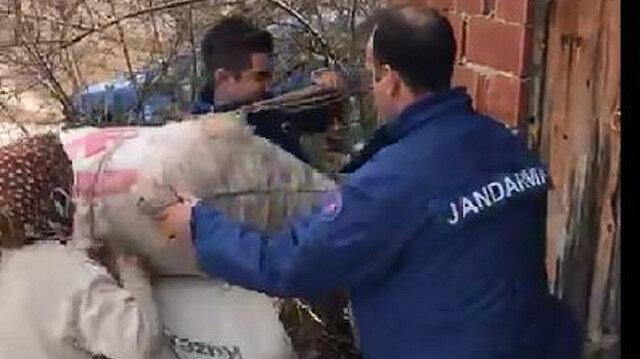 Sırtında saman taşıyan 70 yaşındaki kadına jandarmadan yardım