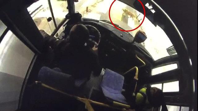 Şoför yaya geçidinde bekleyen köpeğe yol verdi