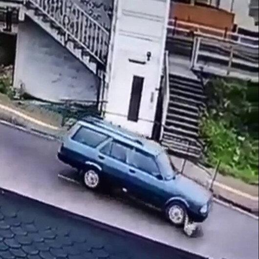 Yavru köpeği ezip kaçan araç sürücüsü yakalandı