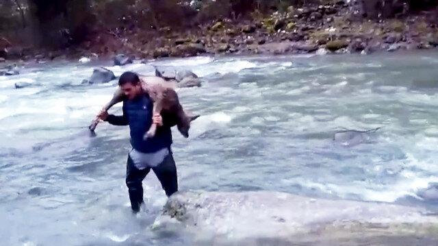 Kurtardığı karacayı 2 km boyunca sırtında taşıdı