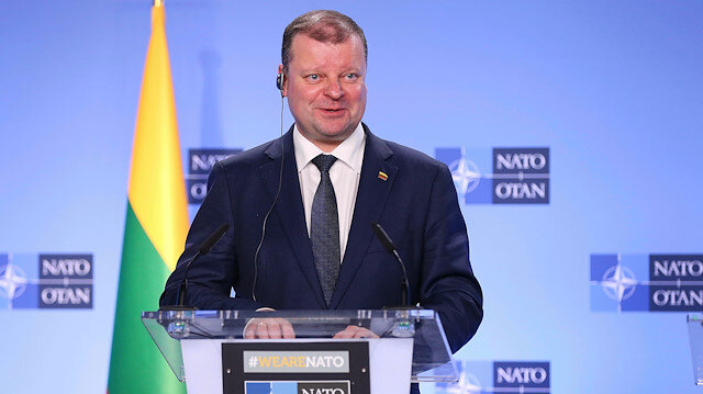 Lithuania PM says to run for presidency in May