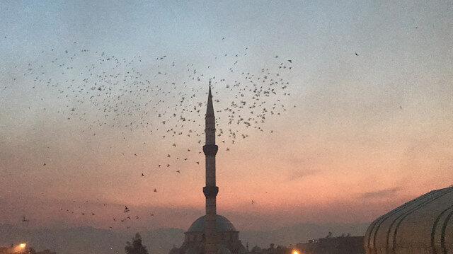 Şanlıurfa semalarına güvercin döküldü