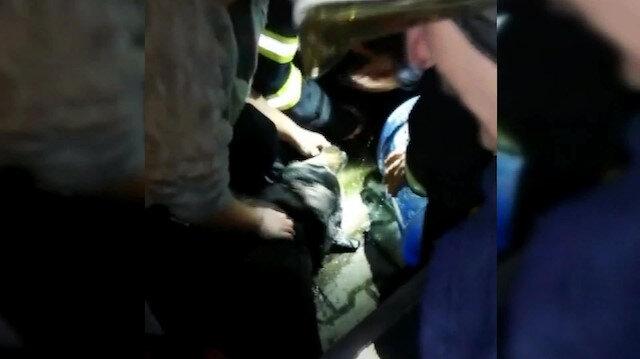 Dumandan etkilenen köpek kalp masajıyla hayata döndürüldü
