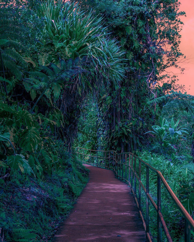 Hawaii Adaları;Amerika Birleşik Devletleri'nin 50. eyaletidir.