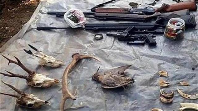 Bartın'da kaçak avcının evinden çıkan hayvan parçaları.