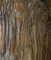 Hakkari'de keşfedildi: Damlataş Mağarası