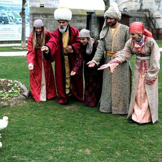 """بالصور """"دجاجات السلاطين العثمانيين"""" تترعرع في متحف تركي"""