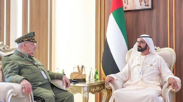 الإمارات تدخل على خط التظاهرات في الجزائر (شاهد)