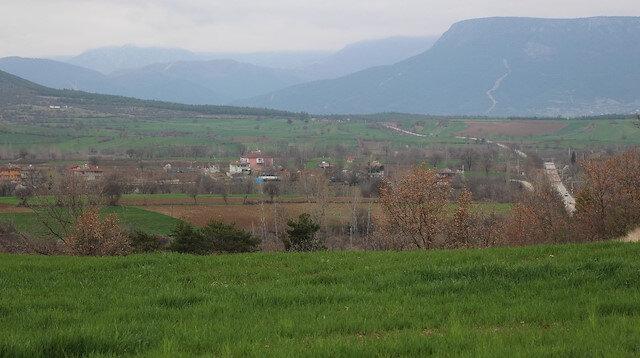 Kenevir üretiminde merkez seçilmişti: Arazilere talep arttı