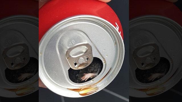 Dünyaca ünlü koladan ölü fare çıktı