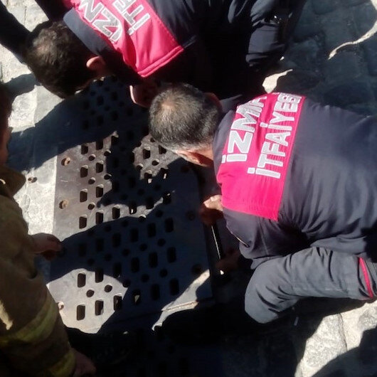 İzmir'de ilginç olay: Mazgala sıkıştı itfaiyeyi alarma geçirdi