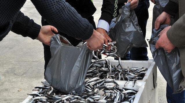 Foto/Arşiv: Hamsi satışı