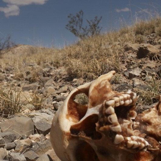 Meksika'da gizli mezarlarda 45 ceset