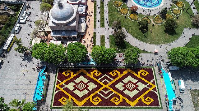 من نصف مليون زهرة.. إسطنبول تبسط أكبر سجادة توليب في العالم