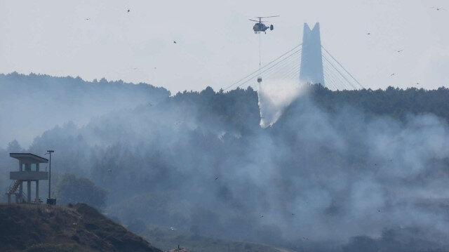 Kavacık'ta orman yangını