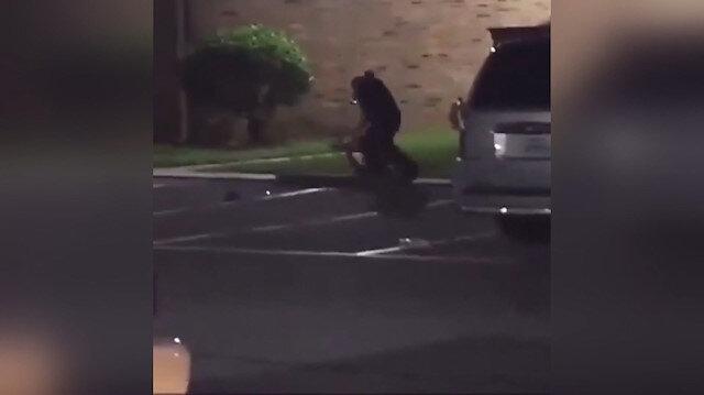 ABD polisi gözaltına alamadığı hamile kadına kurşun yağdırdı