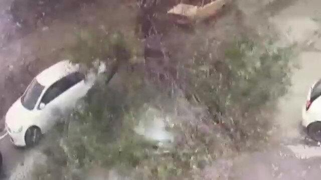 Test sürüşü yapılan aracın üzerine ağaç devrildi
