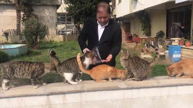 Sevin Başkan'ım ben çekeyim... CHP'li Kılıç'ın hayvan sevgisi şovu kamerada