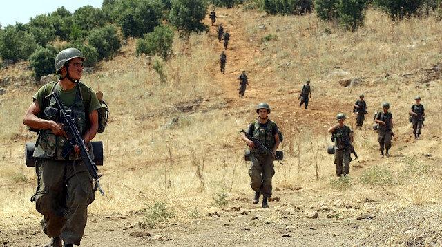Lice'de operasyon: 5 terörist öldürüldü